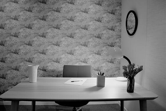 Consulta Oficina Calle Espalter, Madrid. El Prado Psicólogos
